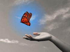 gi-letting-go-butterfly11