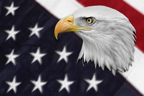 FLGIMGS1000000101_-00_America-the-Beautiful-Graphic-plain-Downloadable-Image_3