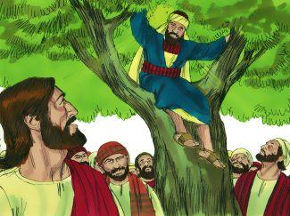 005-zacchaeus